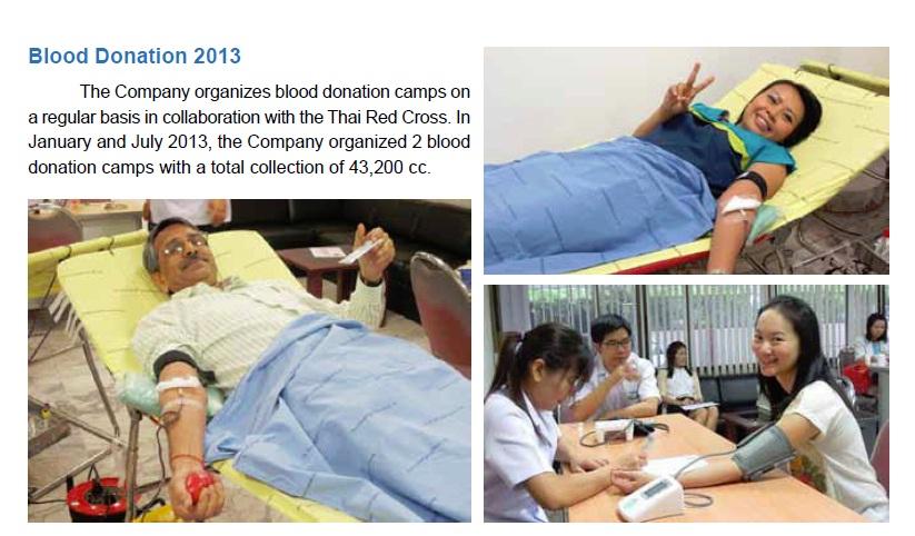 Blood Donation 2013 EN